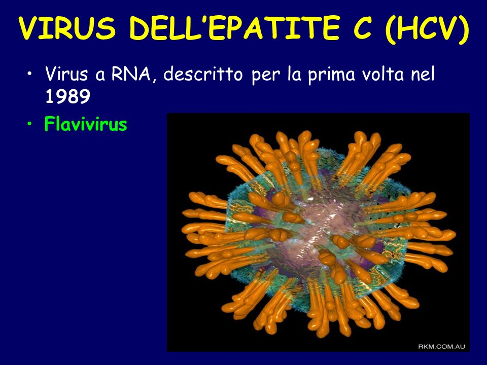 VIRUS DELL'EPATITE C (HCV)