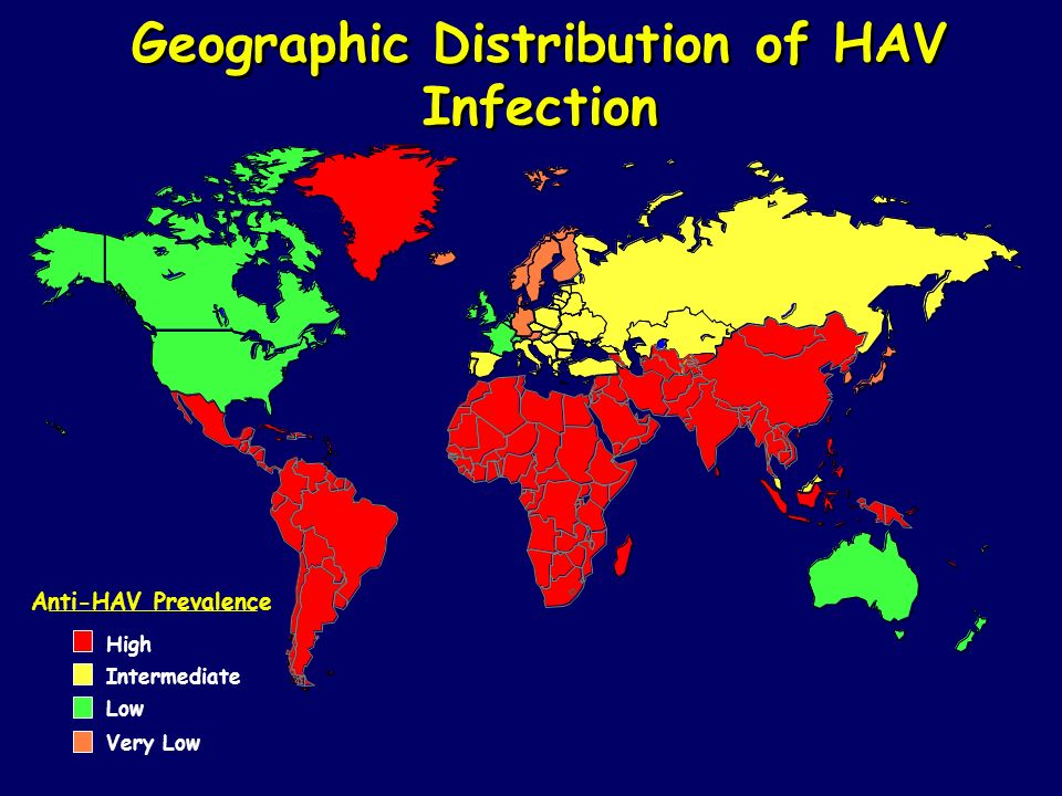 Geographic Distribution of HAV Infection