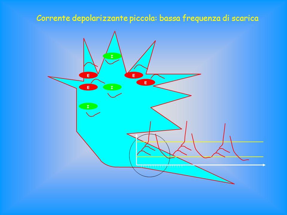 Corrente depolarizzante piccola: bassa frequenza di scarica