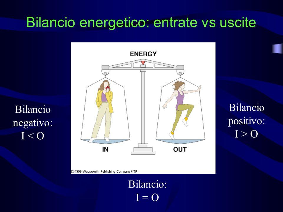 Bilancio energetico: entrate vs uscite