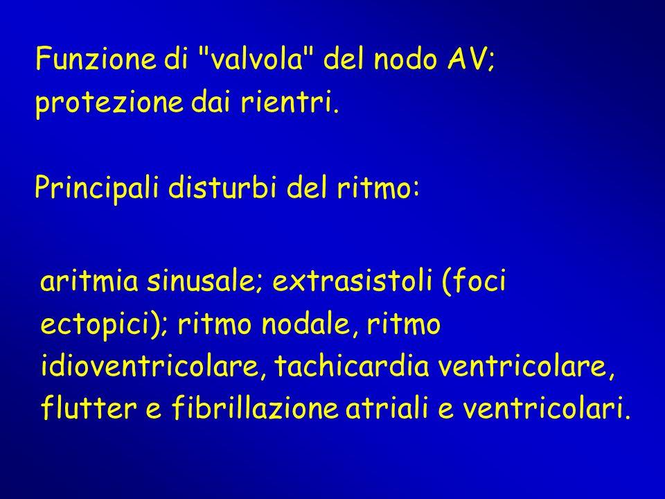 Funzione di valvola del nodo AV; protezione dai rientri.
