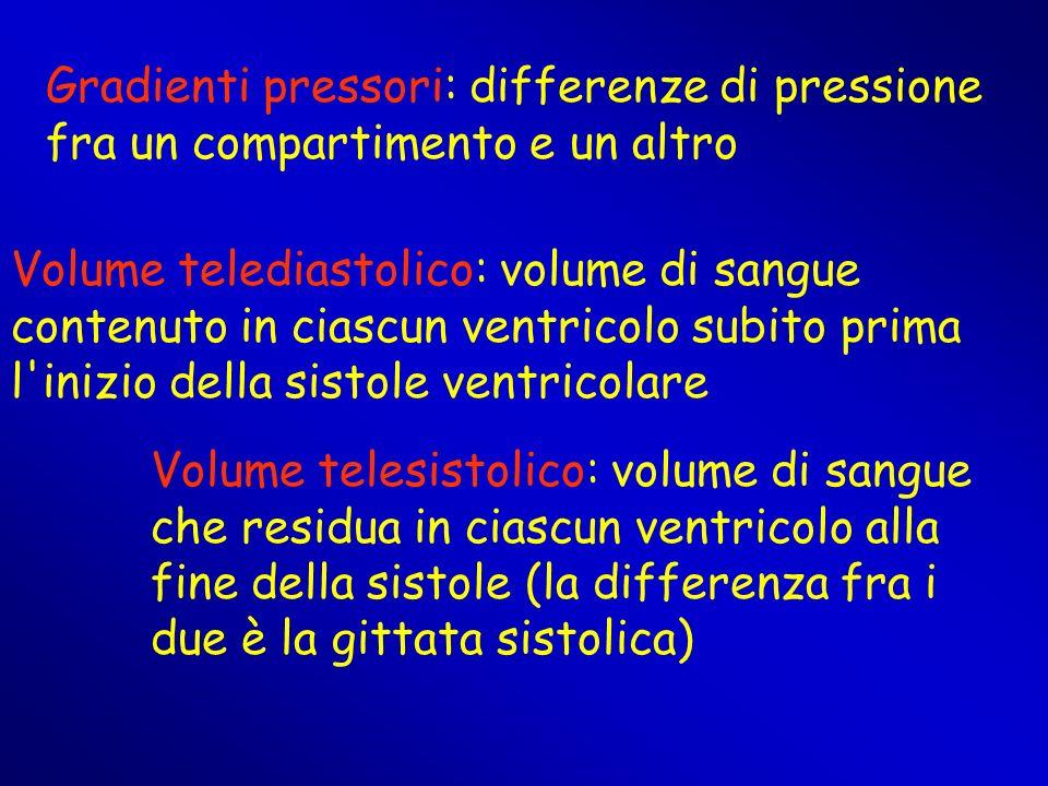 Gradienti pressori: differenze di pressione fra un compartimento e un altro