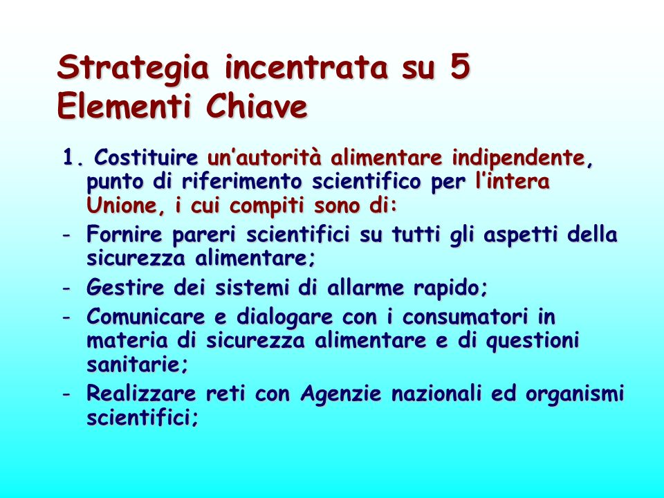 Strategia incentrata su 5 Elementi Chiave