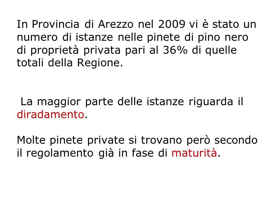 In Provincia di Arezzo nel 2009 vi è stato un numero di istanze nelle pinete di pino nero di proprietà privata pari al 36% di quelle totali della Regione.