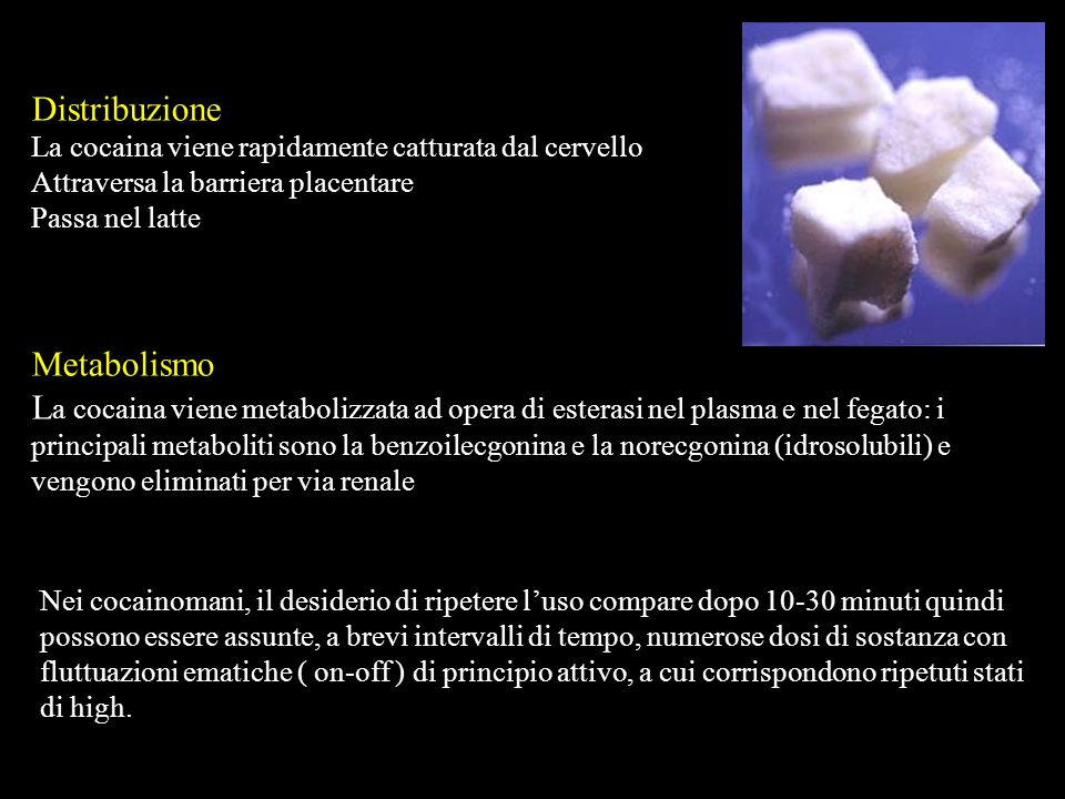 Distribuzione Metabolismo