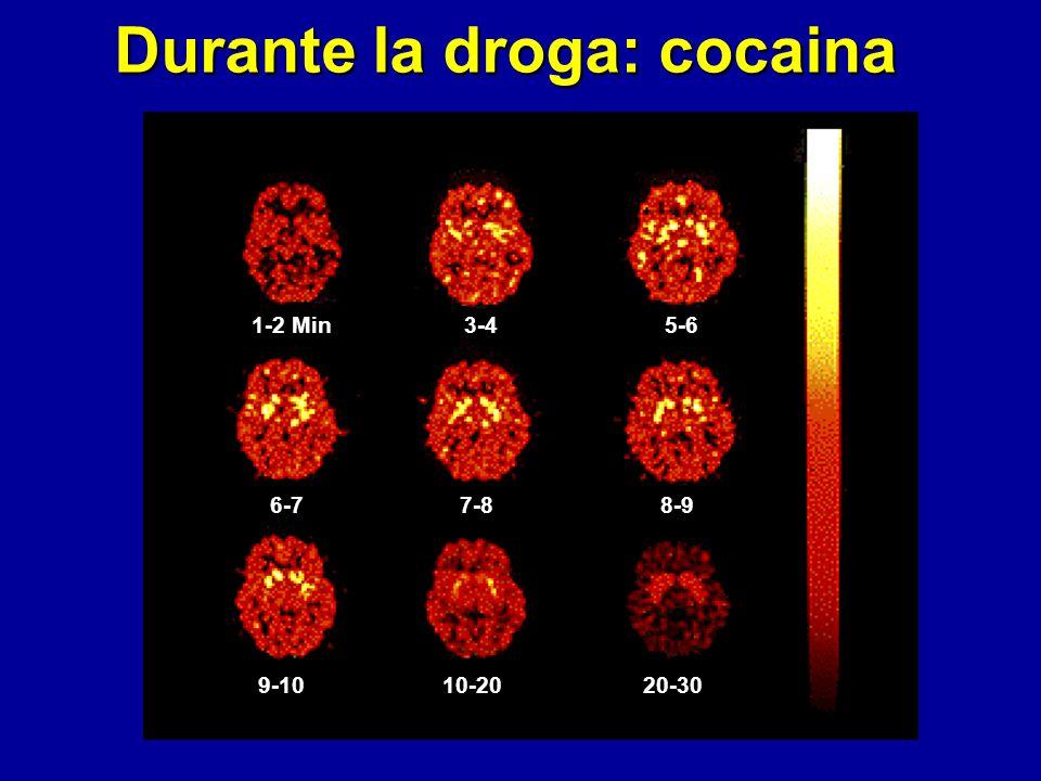 Durante la droga: cocaina