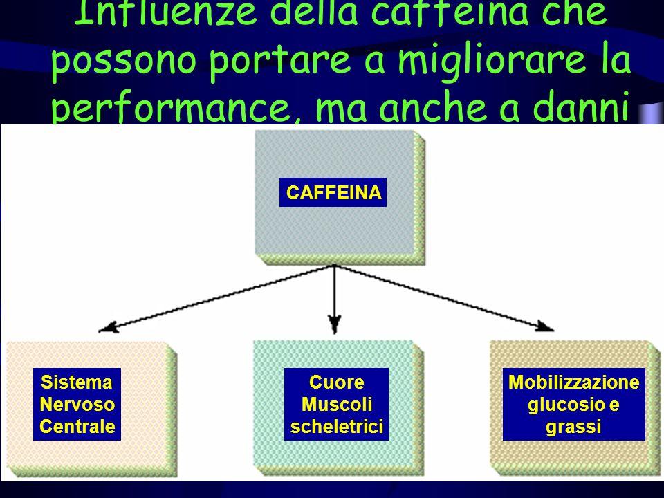 Influenze della caffeina che possono portare a migliorare la performance, ma anche a danni