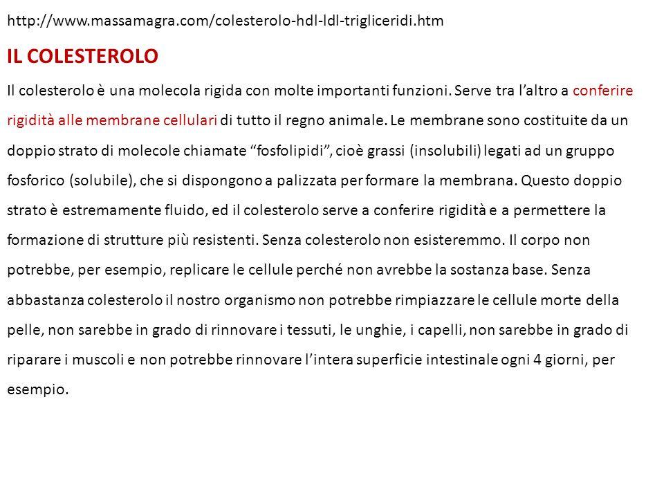 http://www.massamagra.com/colesterolo-hdl-ldl-trigliceridi.htm