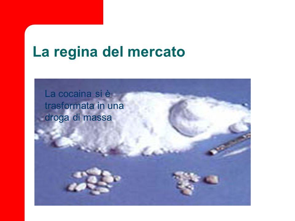 La regina del mercato La cocaina si è trasformata in una droga di massa