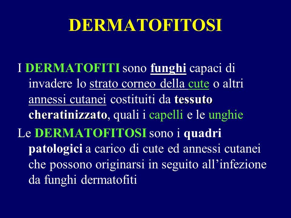 DERMATOFITOSI