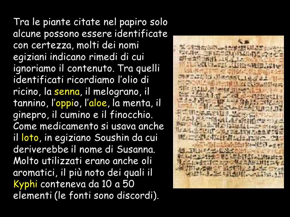 Tra le piante citate nel papiro solo alcune possono essere identificate con certezza, molti dei nomi egiziani indicano rimedi di cui ignoriamo il contenuto.