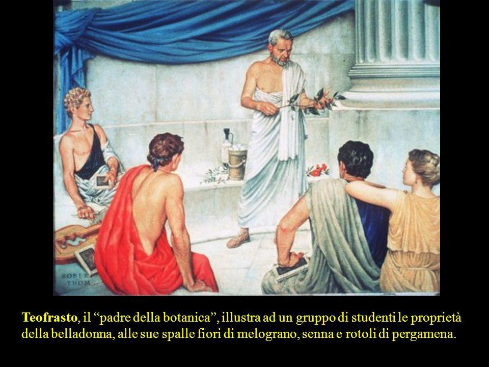 Teofrasto, il padre della botanica , illustra ad un gruppo di studenti le proprietà della belladonna, alle sue spalle fiori di melograno, senna e rotoli di pergamena.