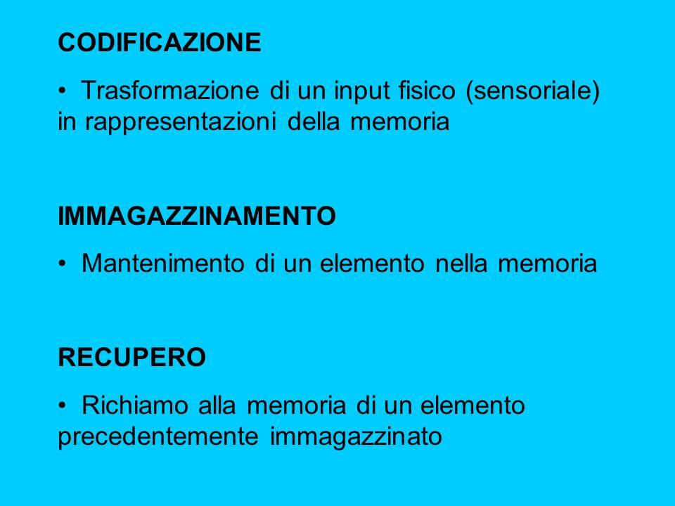 CODIFICAZIONE Trasformazione di un input fisico (sensoriale) in rappresentazioni della memoria. IMMAGAZZINAMENTO.