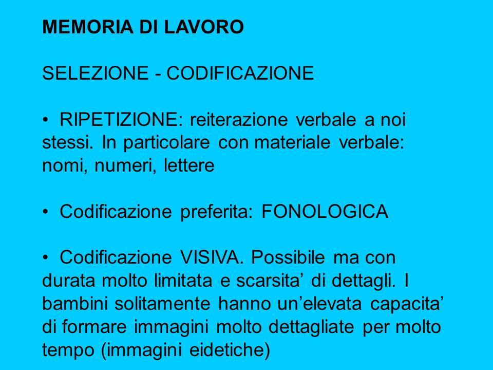 MEMORIA DI LAVORO SELEZIONE - CODIFICAZIONE.