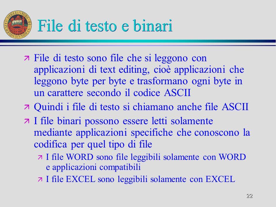 File di testo e binari