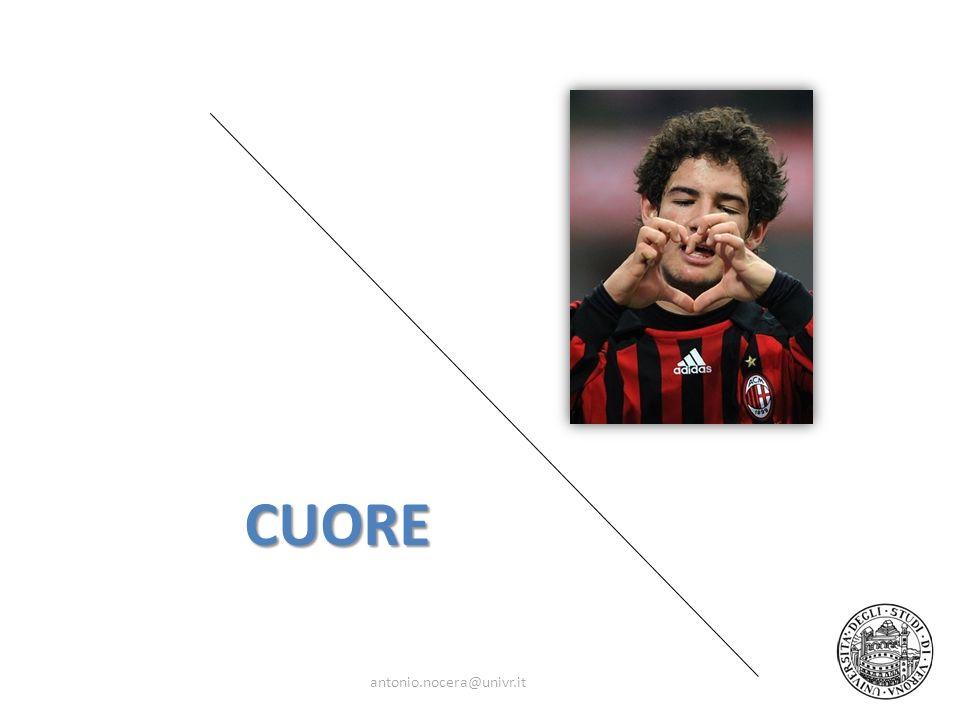 CUORE antonio.nocera@univr.it