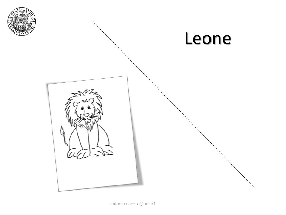 Leone antonio.nocera@univr.it