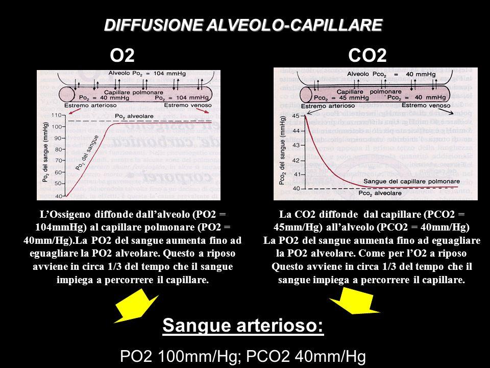 DIFFUSIONE ALVEOLO-CAPILLARE
