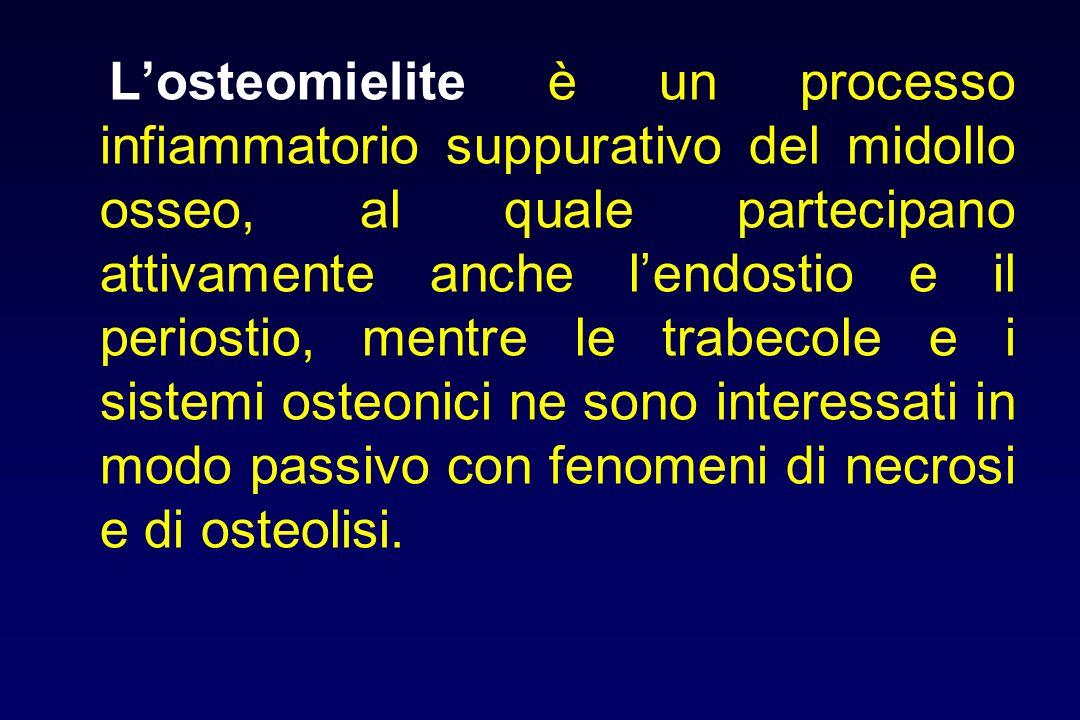L'osteomielite è un processo infiammatorio suppurativo del midollo osseo, al quale partecipano attivamente anche l'endostio e il periostio, mentre le trabecole e i sistemi osteonici ne sono interessati in modo passivo con fenomeni di necrosi e di osteolisi.