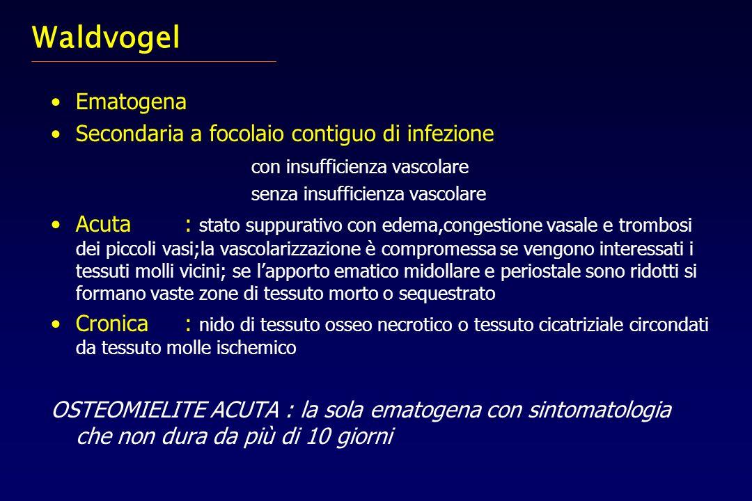 Waldvogel Ematogena Secondaria a focolaio contiguo di infezione