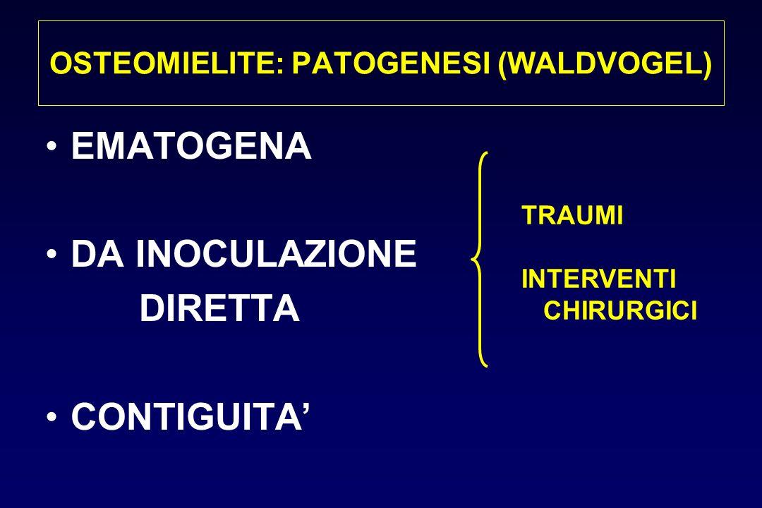 OSTEOMIELITE: PATOGENESI (WALDVOGEL)