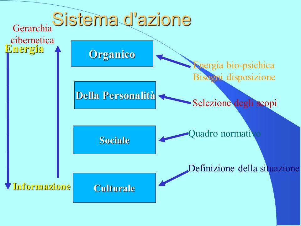 Sistema d azione Energia Organico Della Personalità Gerarchia