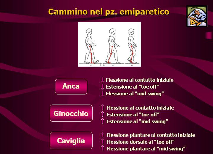 Cammino nel pz. emiparetico
