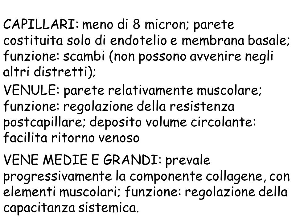 CAPILLARI: meno di 8 micron; parete costituita solo di endotelio e membrana basale; funzione: scambi (non possono avvenire negli altri distretti);