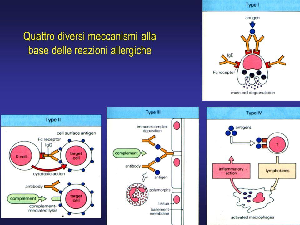 Quattro diversi meccanismi alla base delle reazioni allergiche