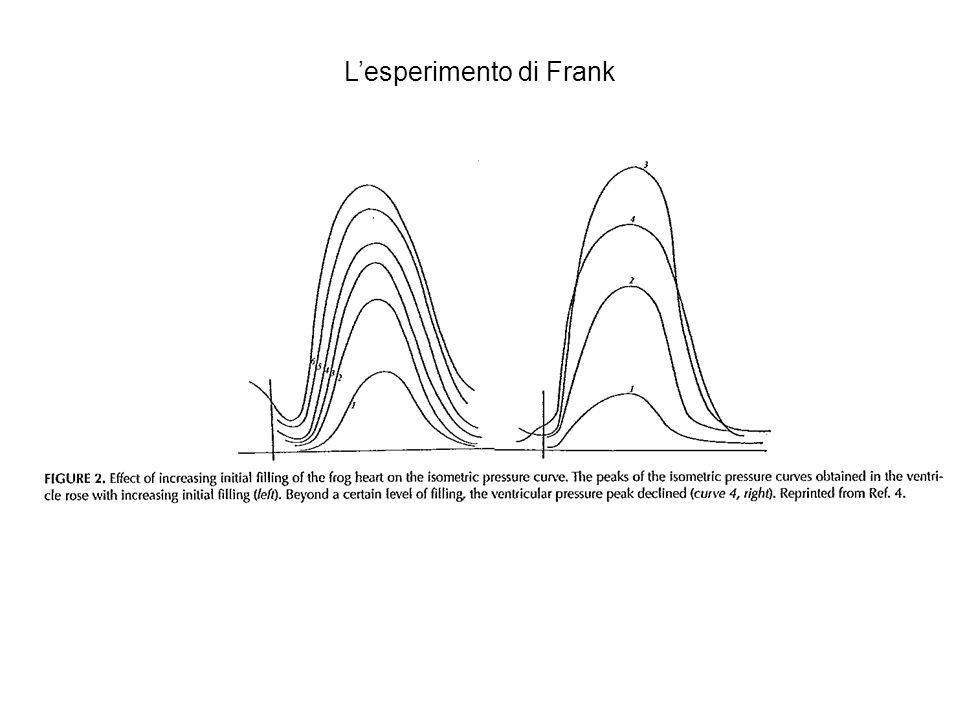 L'esperimento di Frank