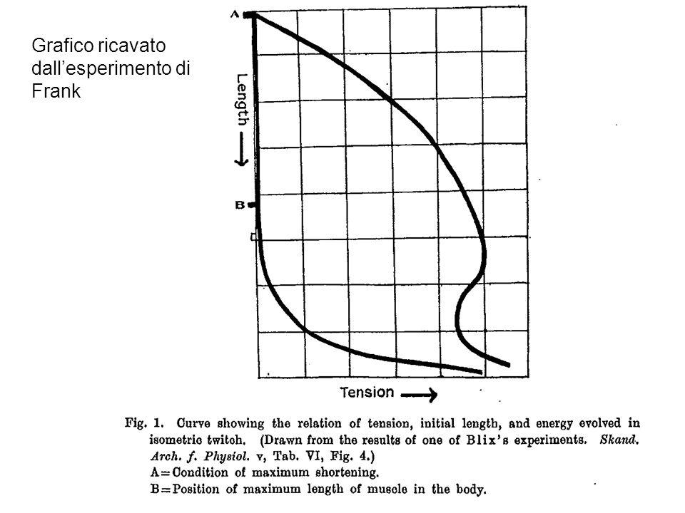 Grafico ricavato dall'esperimento di Frank