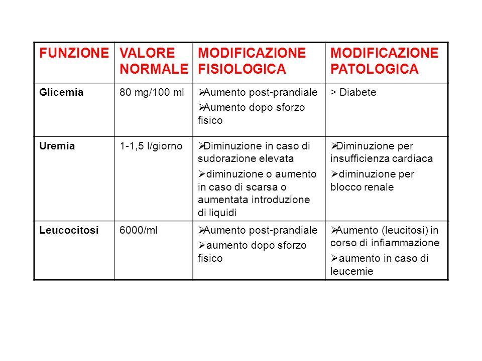 MODIFICAZIONE FISIOLOGICA MODIFICAZIONE PATOLOGICA