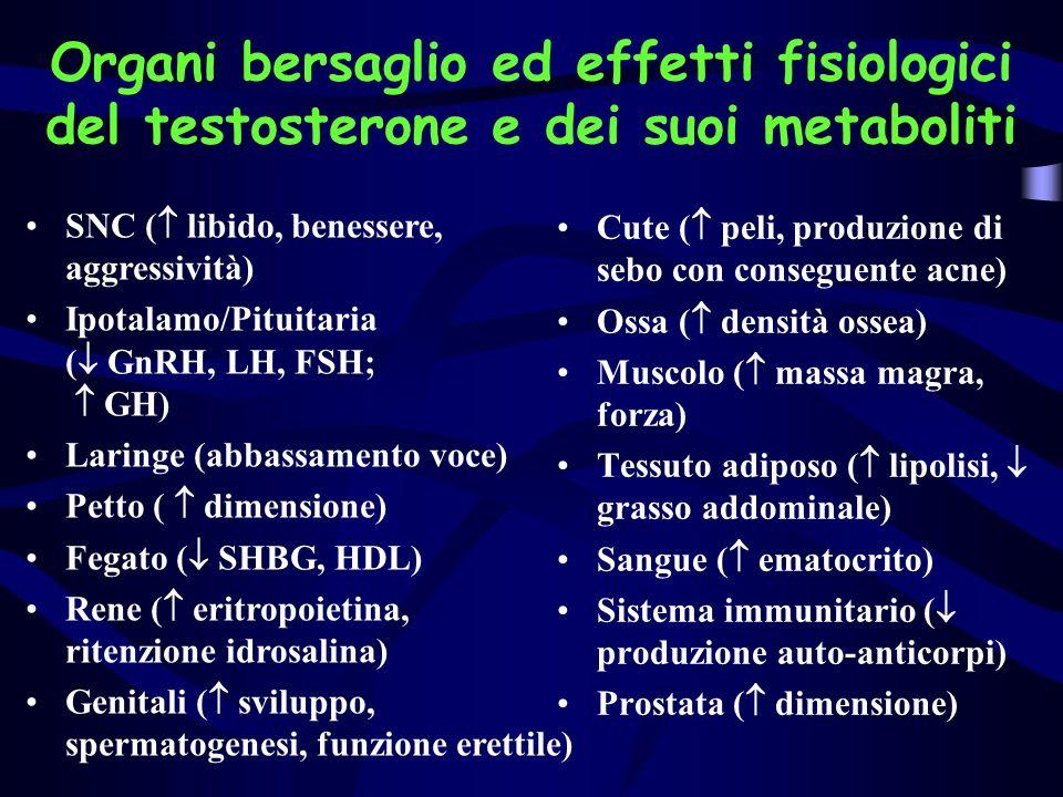 Organi bersaglio ed effetti fisiologici del testosterone e dei suoi metaboliti