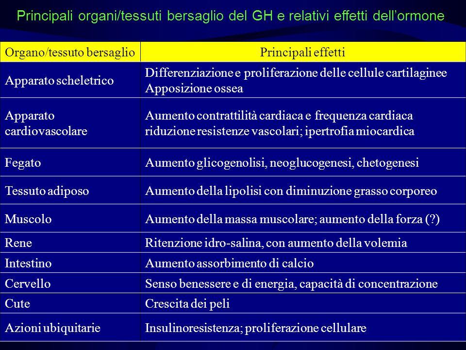 Principali organi/tessuti bersaglio del GH e relativi effetti dell'ormone