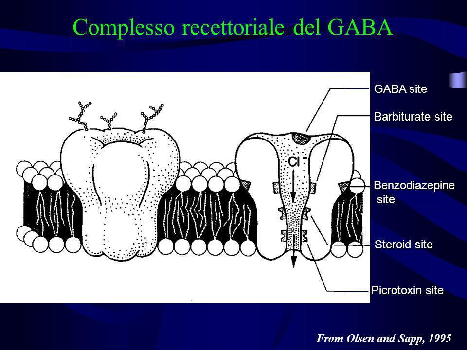 Complesso recettoriale del GABA