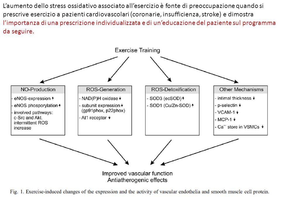 L'aumento dello stress ossidativo associato all'esercizio è fonte di preoccupazione quando si prescrive esercizio a pazienti cardiovascolari (coronarie, insufficienza, stroke) e dimostra l'importanza di una prescrizione individualizzata e di un'educazione del paziente sul programma da seguire.