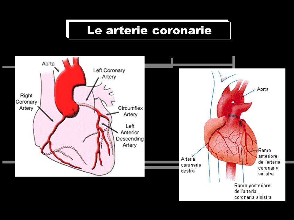 Le arterie coronarie