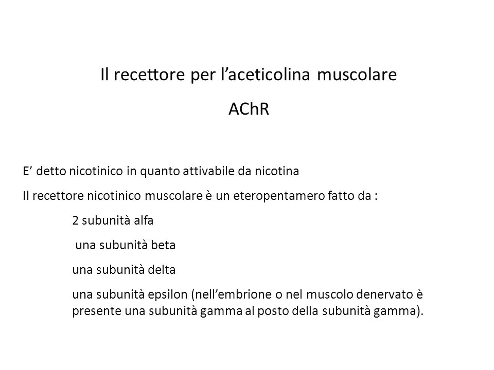Il recettore per l'aceticolina muscolare