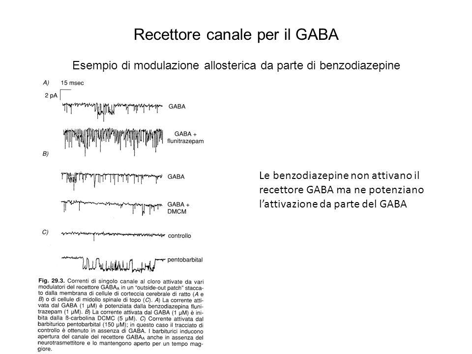 Recettore canale per il GABA