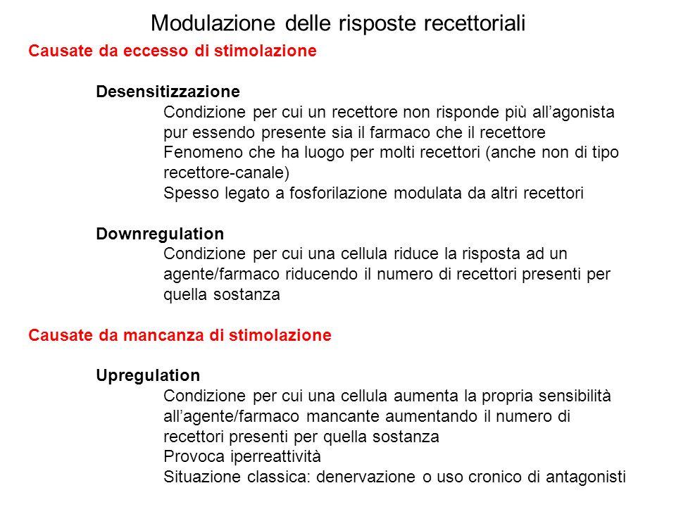 Modulazione delle risposte recettoriali