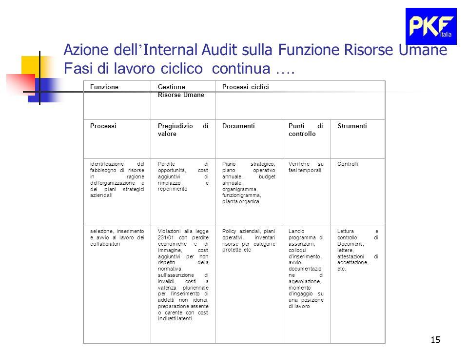 Azione dell'Internal Audit sulla Funzione Risorse Umane Fasi di lavoro ciclico continua ….