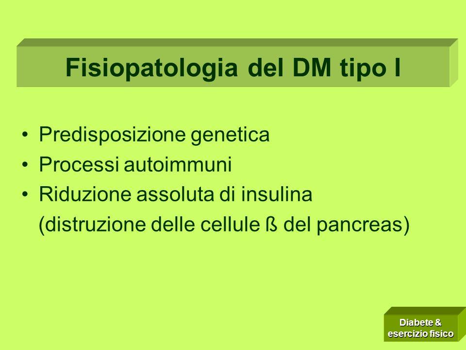 Fisiopatologia del DM tipo I
