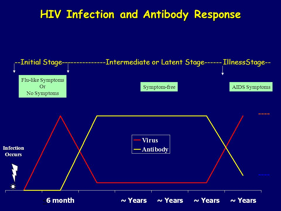 HIV Infection and Antibody Response