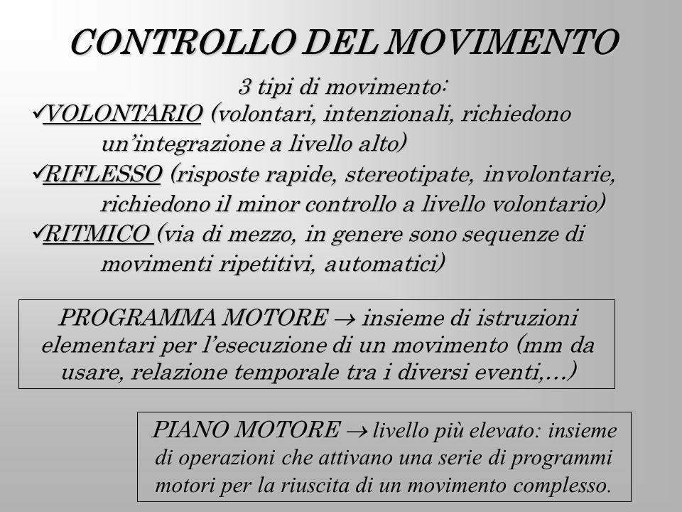 CONTROLLO DEL MOVIMENTO