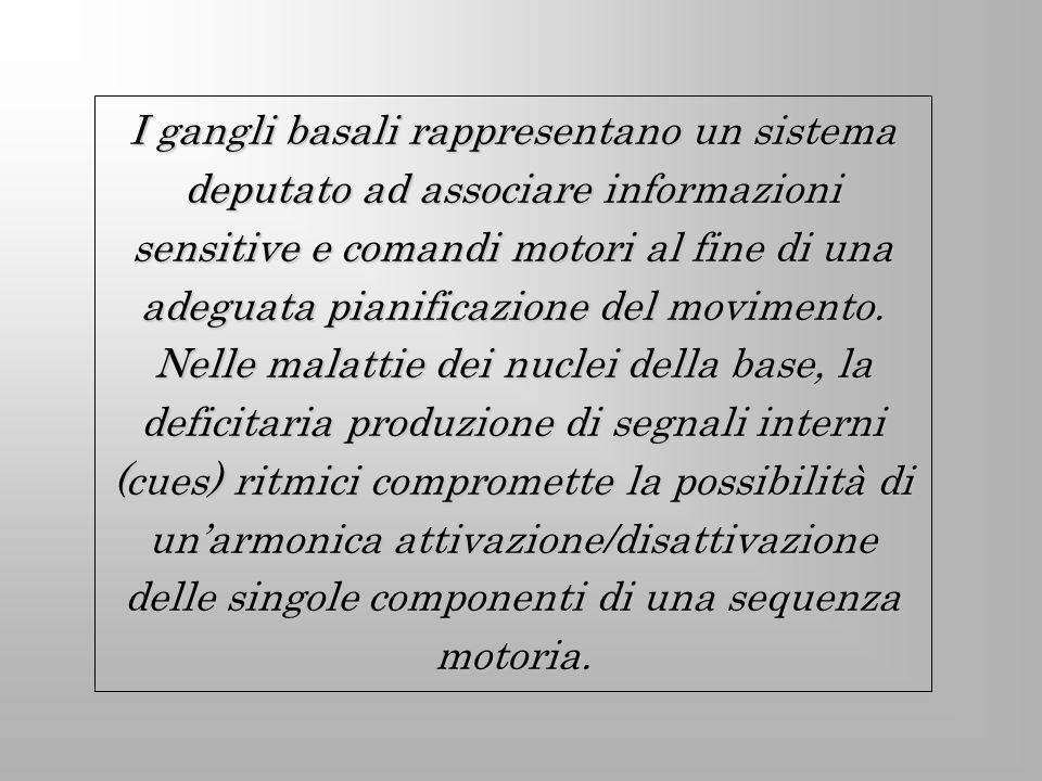 I gangli basali rappresentano un sistema deputato ad associare informazioni sensitive e comandi motori al fine di una adeguata pianificazione del movimento.