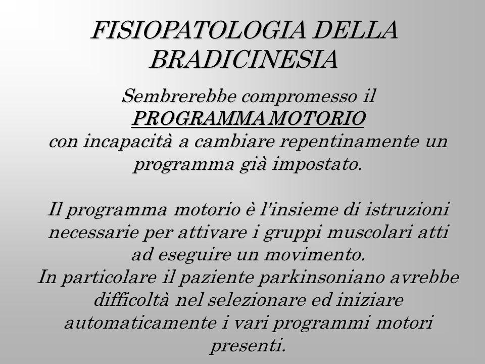 FISIOPATOLOGIA DELLA BRADICINESIA