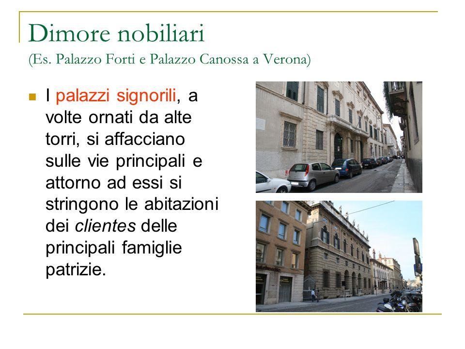 Dimore nobiliari (Es. Palazzo Forti e Palazzo Canossa a Verona)
