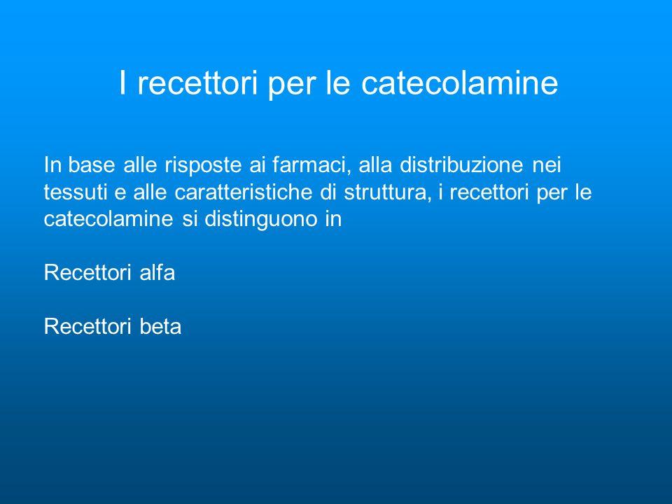 I recettori per le catecolamine