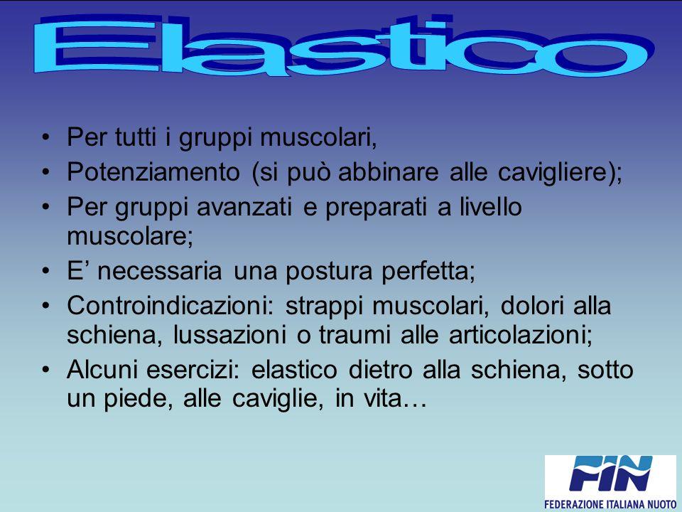 Elastico Per tutti i gruppi muscolari,