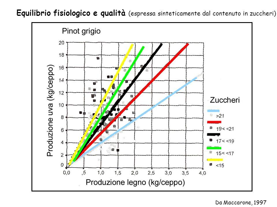Equilibrio fisiologico e qualità (espressa sinteticamente dal contenuto in zuccheri)